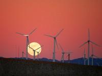 Wind Farm and Moon