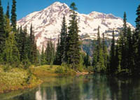 Mt. Rainier, trees, and lake
